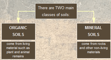 Soil definitions and properties for Organic soil definition